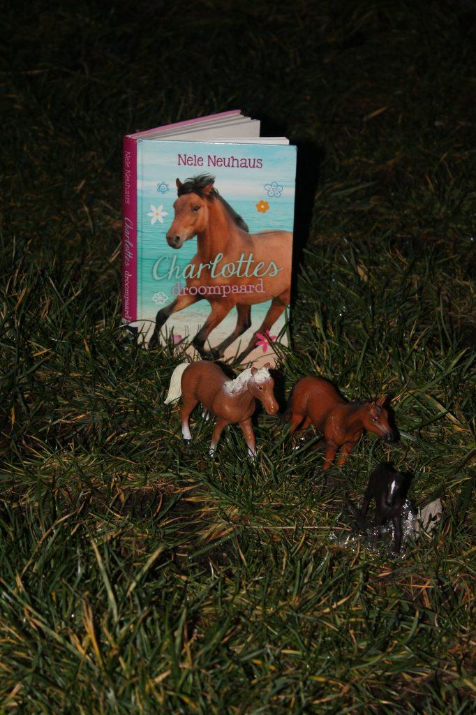 Charlottes droompaard staand