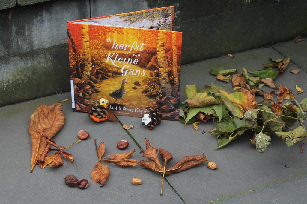 De herfst van kleine gans